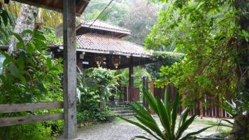 En un huerto tropical
