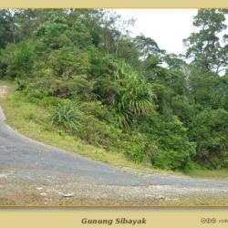 Gunung Sibayak: Pequeñito, pero con humos