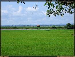 Alrededores de Bhamo (Myanmar) en bici