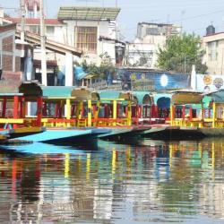 Xochimilco y fin del viaje